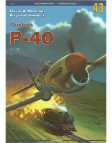 Curtiss P-40 Vol. III, Kagero