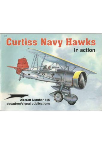 Curtiss Navy Hawks in Action
