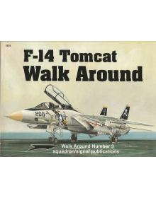 F-14 Tomcat - Walk Around No 3