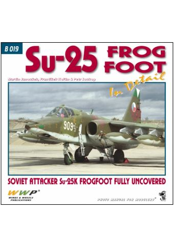 Su-25 Frogfoot in detail, WWP