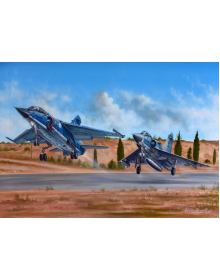 Aviation Art Painting ''Mirage F.1 & M2000'' - medium size print
