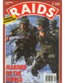 RAIDS (english edition)
