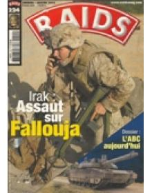 RAIDS (french edition)