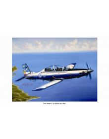 Aviation Art Painting T-6A TEXAN II (50 Years HAF 361st Air Training Squadron) - Medium size Print